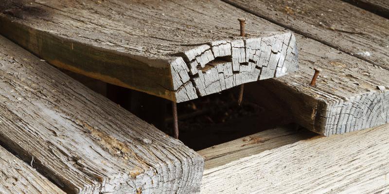 Os paletes de madeira empenaram, o que fazer?