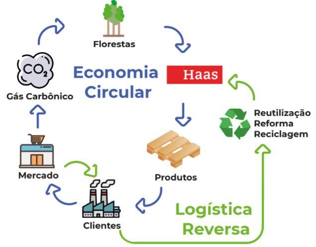Economia-circular-haas-madeiras